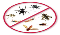 Tips for Commercial Pest Control