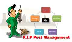 Integrated Pest Management and Its Benefits