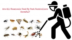 Are All Chemicals Used By Pest Controllers Harmful?