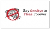 How to Say Goodbye to Fleas Forever?
