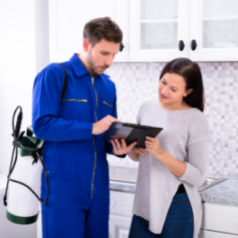 What Should Be Your Holiday Preparations For Pest Control Checklist For Your Property?
